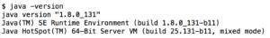 Java Version Output